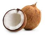 Coconut kernel 1